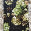 Catálogo Gucci gg blooms Men