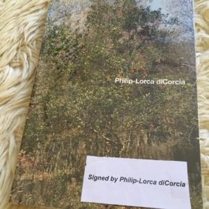Philip-Lorca diCorcia Cover
